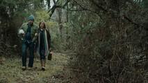 Дверь в лесу