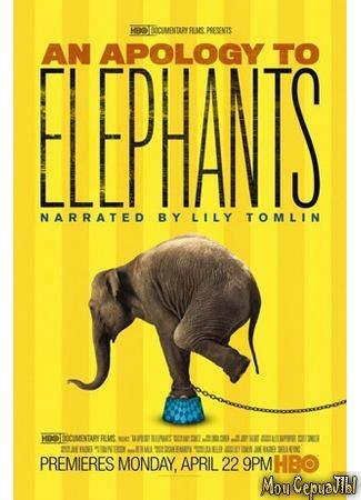 кино В защиту слонов (An Apology to Elephants) 17.05.20