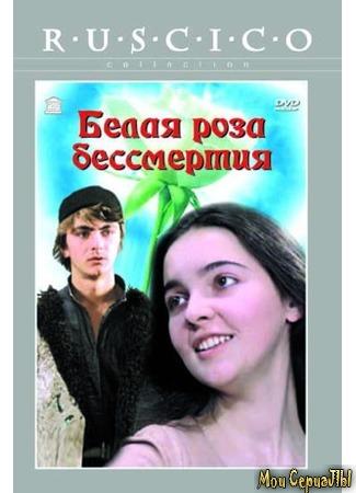 кино Белая роза бессмертия 17.05.20