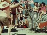 Пляжный разбойник