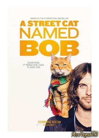 кино Уличный кот по кличке Боб (A Street Cat Named Bob) 04.06.20