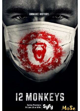 кино 12 обезьян, 1-й сезон (12 Monkeys, season 1) 21.11.20
