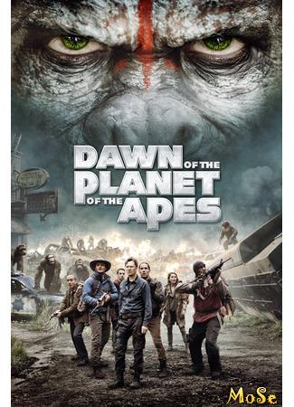 кино Планета обезьян: Революция (Dawn of the Planet of the Apes) 13.01.21