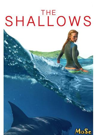 кино Отмель (The Shallows) 15.01.21