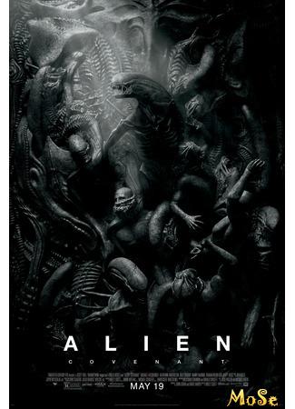 кино Чужой: Завет (Alien: Covenant) 15.01.21