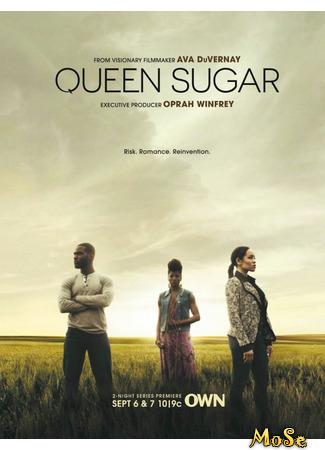 кино Королева сахарных плантаций, 1-й сезон (Queen Sugar, season 1) 19.01.21